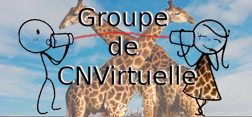 Groupe de pratiques CNVirtuelle